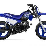 2020 Yamaha PW50 Review