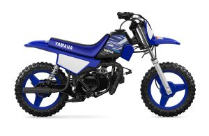 2020 PW50 review, peewee 50 review